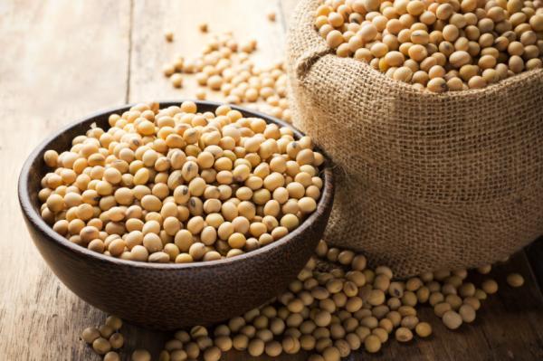 Alimentos que aumentan los estrógenos