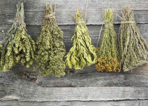 Alimentos que no debo comer durante la lactancia - Suplementos herbales o batidos