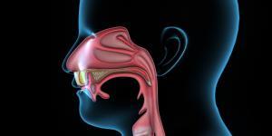 Tabique nasal desviado: causas y tratamiento