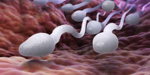 Esperma ácido: causas