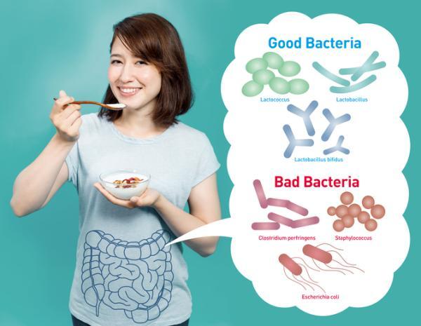 ¿Puedo tomar omeprazol y probióticos al mismo tiempo? - Qué son los probióticos y para qué se usan