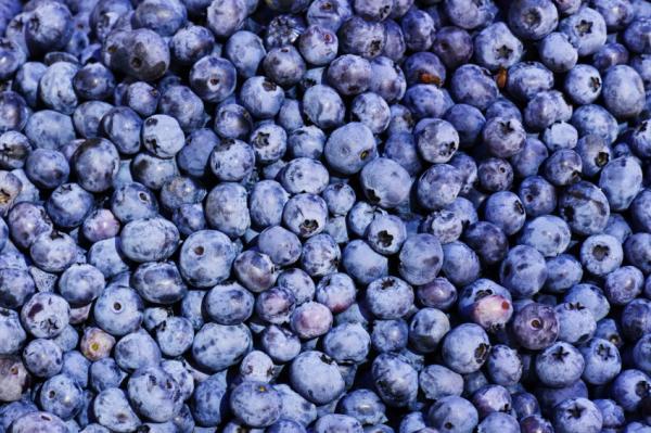 Alimentos que contienen vitamina B17 - Bayas que contienen vitamina B17