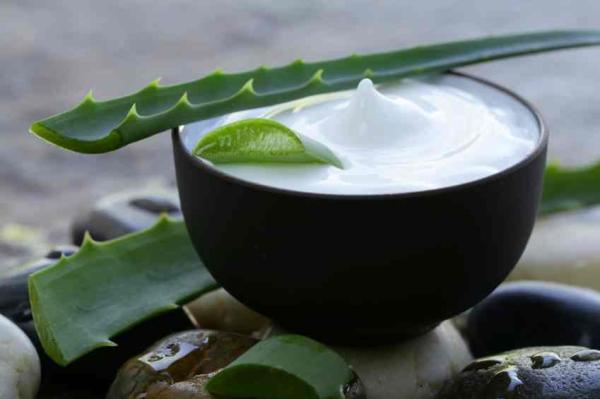Cómo eliminar las estrías con aloe vera - Cómo hacer una crema de aloe vera casera para las estrías