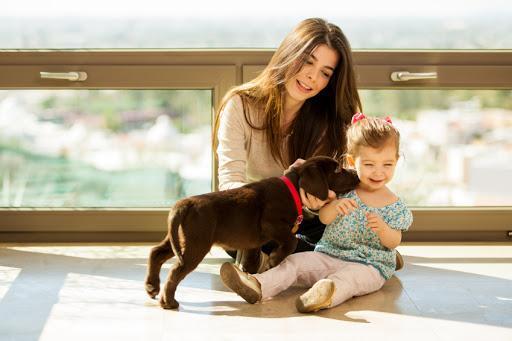 ¿Es bueno tener perros con bebés? - Aspectos médicos para la buena convivencia de perros y bebés