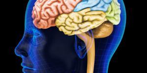 Síndrome de Tourette: síntomas, causas, y tratamiento