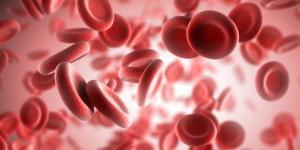 Velocidad en la sangre alterada ¿a qué es debido?