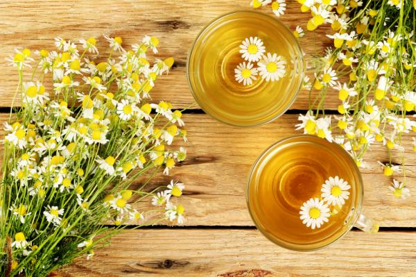 Tés para desinflamar el estómago - Manzanilla (anthemis nobilis)