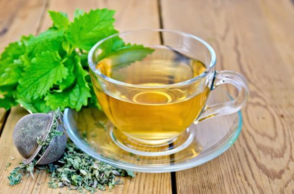 Tés para desinflamar el estómago - Té de melisa o toronjil (melissa officinalis)