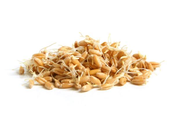 ¿Sabes cuáles son los 10 alimentos más saludables? - Germen de trigo, un remedio multiusos