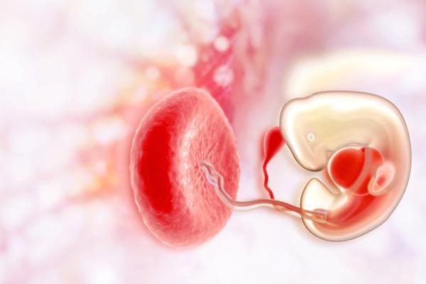Dolor de ovarios sin regla: ¿puede ser embarazo? - ¿Puede ser embarazo un dolor de ovarios sin regla?