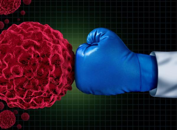 ¿Qué puede dañar el sistema inmunológico?