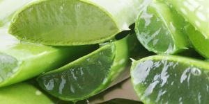 Tratamiento natural para la pitiriasis versicolor