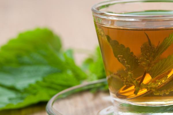 Remedios naturales para el bazo inflamado - Infusiones depurativas para desinflamar el bazo