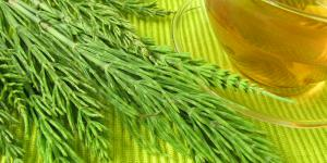 Remedios naturales para el bazo inflamado