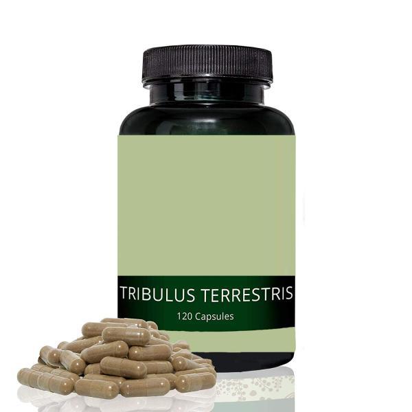 Tribulus Terrestris: para qué sirve, propiedades, cómo tomarlo y efectos secundarios