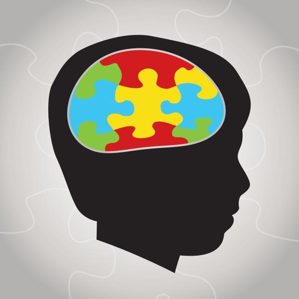 Exceso de ácido fólico aumenta el riesgo de que tu bebé tenga autismo - Las distintas causas del autismo