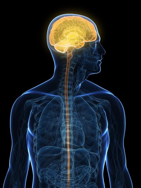 Vértigo: causas, tipos, síntomas y tratamiento - Tipos de vértigos
