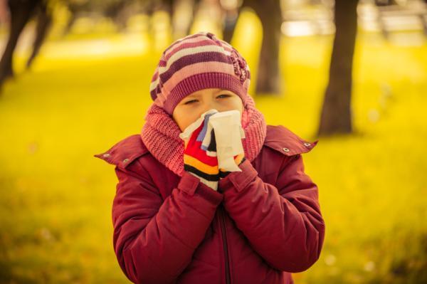 Cuánto dura la gripe - Cuánto dura la gripe