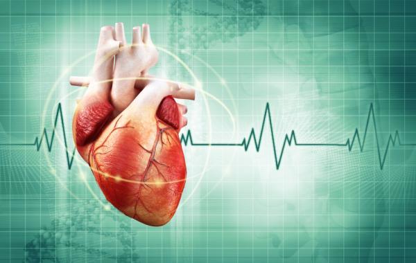 ¿Es normal que la presión arterial suba y baje? - Subidas y bajadas de presión arterial: causas