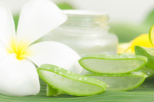 Remedios naturales para la sarna - Remedios naturales para combatir la sarna