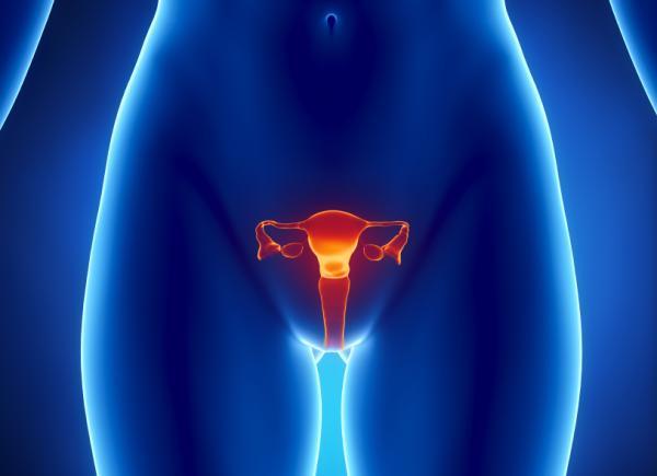 Por qué no me quedo embarazada por segunda vez - Factores que pueden impedir un segundo embarazo