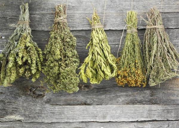 Alimentos que lactantes devem evitar - Suplementos de ervas ou shakes