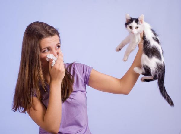 Coceira no nariz, o que pode ser? - Nariz coçando por dentro: alergia