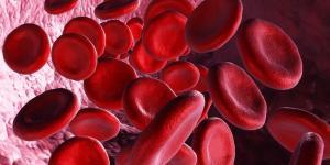 Anisocitose: o que é, causas e tratamento