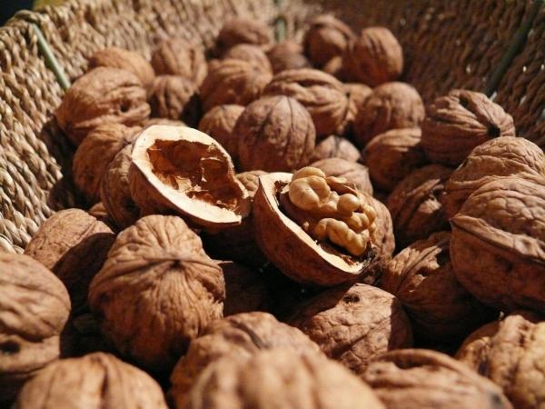 Alimentos que aumentam o estrogênio - Nozes