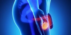 Orquite testicular: causas, sintomas e tratamento